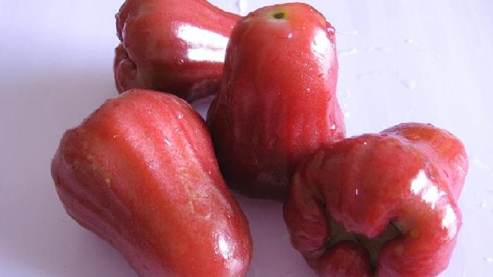 jambu merah delima