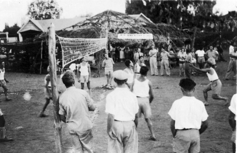 Penjelasan Lengkap Seputar Bola Voli Pecinta Olahraga Wajib Tau